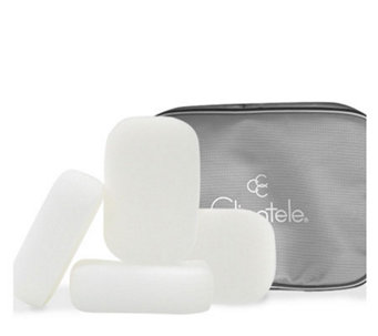 Clientele Sponge Quartet with Gray Vinyl TravelBag - A245710