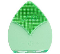 Pop Sonic Leaf Sonic Facial Cleansing Device - A413410