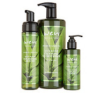 WEN by Chaz Dean Rice 3pc Cleanse and Style Kit - A302548