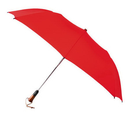 Leighton Magnum Family Size Auto Open & Close Umbrella