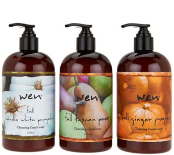 WEN by Chaz Dean Fall 16 oz. Cleansing Cond. Trio w/ Comb - A284371