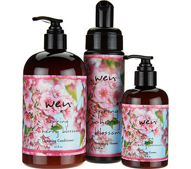 WEN by Chaz Dean Spring 3pc. Styling Kit Auto-Delivery - A297592