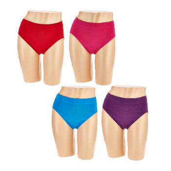 Breezies Set of 4 Seamless Hi Cut Brief Panties