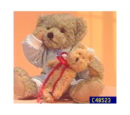 Ashton Drake Emmett 14 Quot Plush Bear Qvc Com