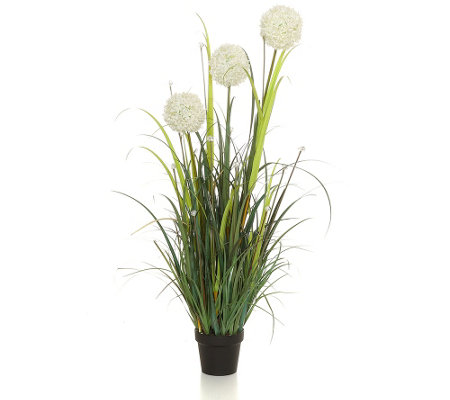 lumida flora leuchtende blumen allium arrangement outdoorgeeignet timer h ca 127cm page 1. Black Bedroom Furniture Sets. Home Design Ideas