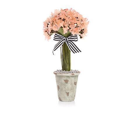 mille fleur hortensienbaum aus echten bl ttern tontopf h. Black Bedroom Furniture Sets. Home Design Ideas