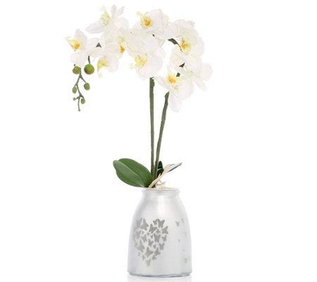 lumida flora leuchtende blumen orchidee mit leuchtendem topf h ca 60cm page 1. Black Bedroom Furniture Sets. Home Design Ideas