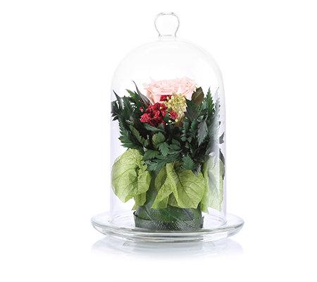 pur fleur echtrosen bouquet einzelne rose glasglocke h ca. Black Bedroom Furniture Sets. Home Design Ideas