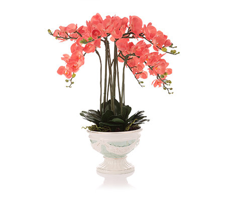 LUMIDA Flora leuchtende Blumen Orchideengesteck ...
