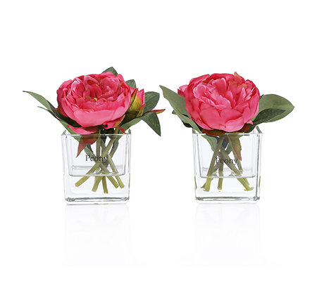 peony kunstblumen pfingstrosen glas vase h ca 15cm 2 tlg page 1. Black Bedroom Furniture Sets. Home Design Ideas
