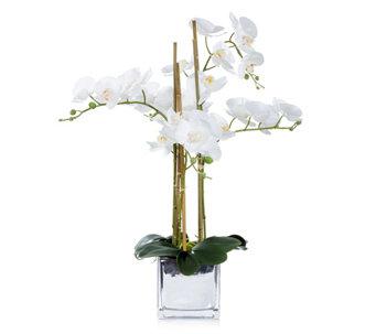 Qvc Wohnideen dekoration wohnaccessoires kaufen qvc de