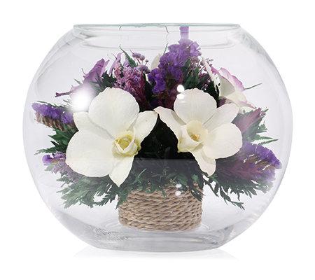 pur fleur echtblumen orchideen im glas ellipsenform h ca 15cm page 1. Black Bedroom Furniture Sets. Home Design Ideas