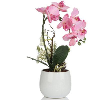lumida flora leuchtende blumen orchidee im topf schnee effekt timer h ca 45cm page 1. Black Bedroom Furniture Sets. Home Design Ideas