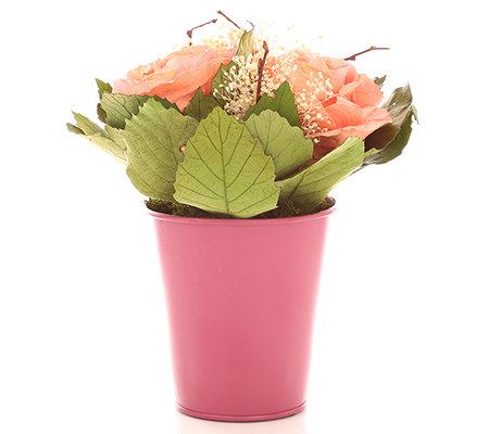 mille fleur rosen arrangement aus echten bl ttern im topf. Black Bedroom Furniture Sets. Home Design Ideas