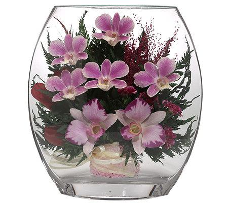 pur fleur echtblumen orchideen im glas ellipsenform h ca 22 5cm page 1. Black Bedroom Furniture Sets. Home Design Ideas