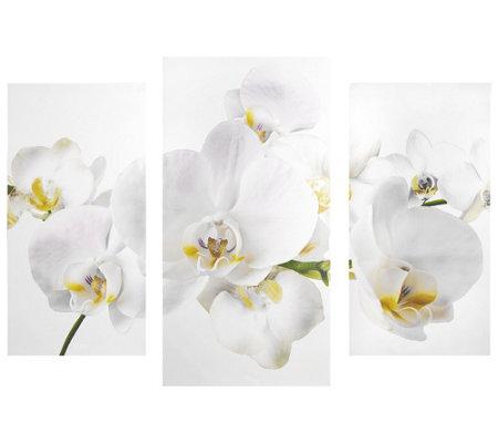 abella arte kunstvolle dekoration orchideen bl ten. Black Bedroom Furniture Sets. Home Design Ideas