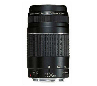 Canon EF 75-300mm Telephoto Zoom Camera Lens - E175417
