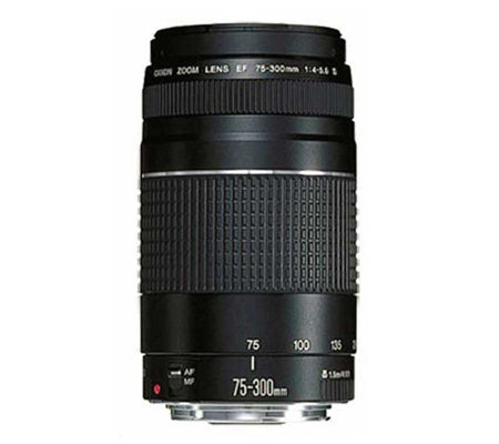 Canon EF 75-300mm Telephoto Zoom Camera Lens