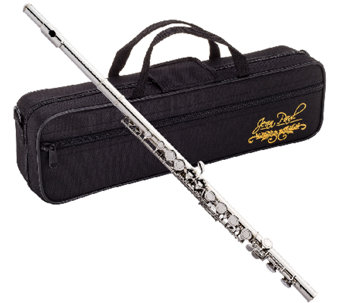 Jean Paul USA Flute with Contoured Case - E282353