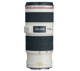 Canon EF 70-200mm f/4L IS USM Lens - E245390