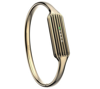 Fitbit Flex 2 Accessory Bangle - F249620