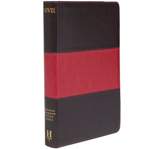 NIV Rainbow Study Bible with Color Coded Verses - F11786