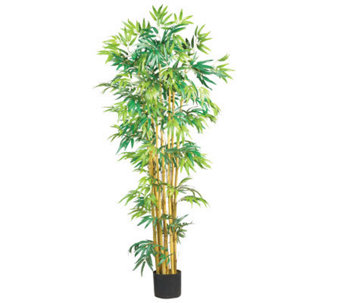 5' Bamboo Tree by Nearly Natural - H162300