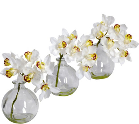 "8"" Cymbidium with Vase (Set of 3) by Nearly Natural"