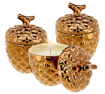 ED On Air Set of 3 Rustic Pinecone Candles by Ellen DeGeneres - H206001