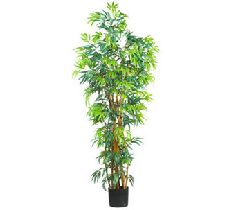 6' Curved Trunk Bamboo Tree by Nearly Natural - H162302