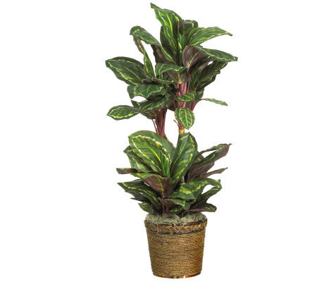 "45"" Maranta Plant by Nearly Natural"