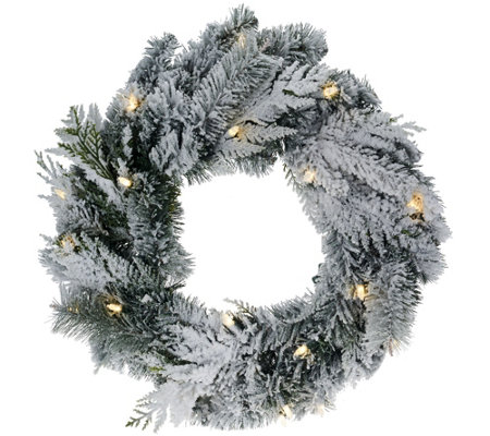 "ED On Air 24"" Lit Flocked Douglas Wreath by Ellen DeGeneres"