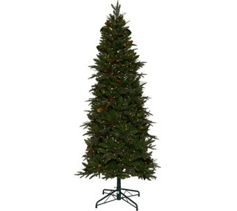Bethlehem Lights 6.5' Sitka Spruce Christmas Tree - H208503