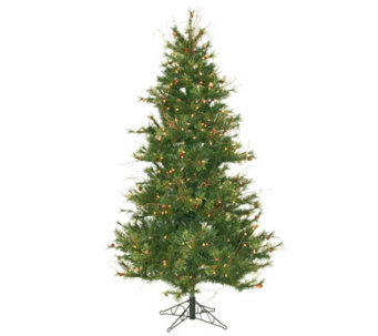 6-1/2' Prelit Slim Mixed Country Pine Tree by Vckerman - H143004
