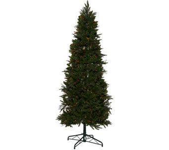 Bethlehem Lights 7.5' Sitka Spruce Christmas Tree - H208504