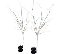 "Scott Living Set of 2 24"" Illuminated Branch Picks - H212604"