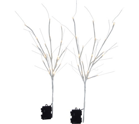"Scott Living Set of 2 24"" Illuminated Branch Picks"