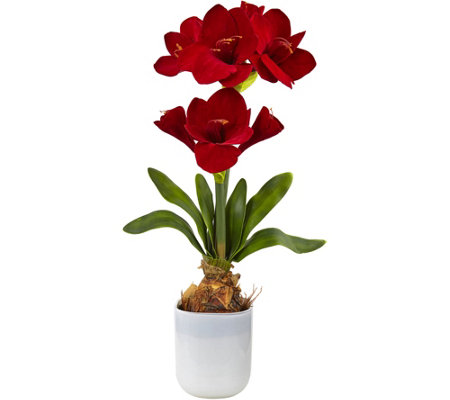 Silk Amaryllis Floral Arrangement by Nearly Natural