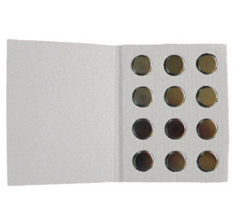 12 Replacement CR2032 Batteries for Valerie Parr Hill Eggs - H171307