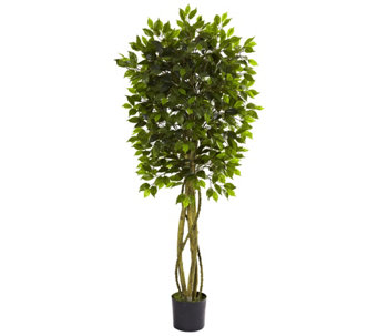 5-1/2' Indoor/Outdoor Ficus Tree by Nearly Natural - H290608