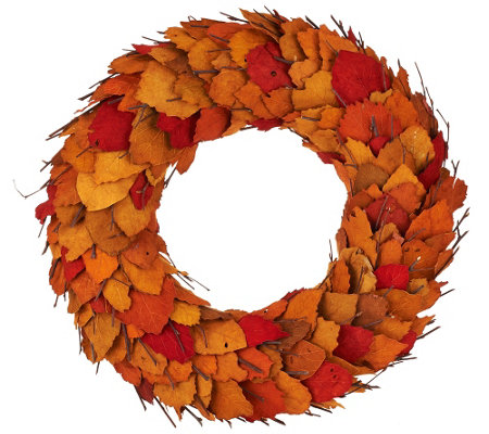 "ED On Air 17"" Dried Leaf Wreath with Twigs by Ellen DeGeneres"