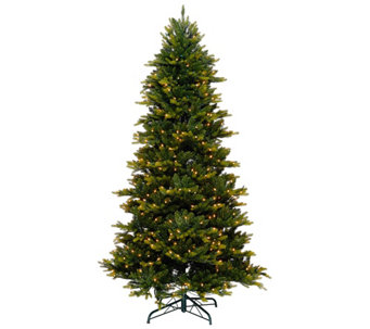 Bethlehem Lights 6.5' Noble Spruce w/ Swift Lock & Multi-Functions - H205410