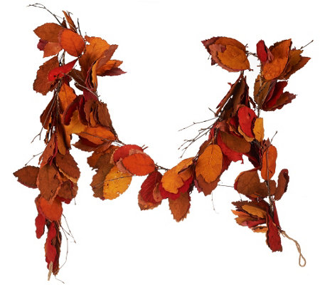 ED On Air 6' Dried Leaf Garland with Twigs by Ellen DeGeneres
