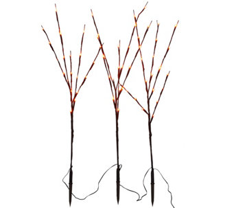 """As Is"" Set of 3 Decorative LED Light Up Branches by Lori Greiner - H211210"