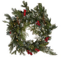"Scott Living 24"" LED Color Flip Snow Dusted Wreath w/7 Functions - H212410"