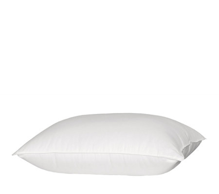 Blue Ridge 1000TC Queen Down Pillow