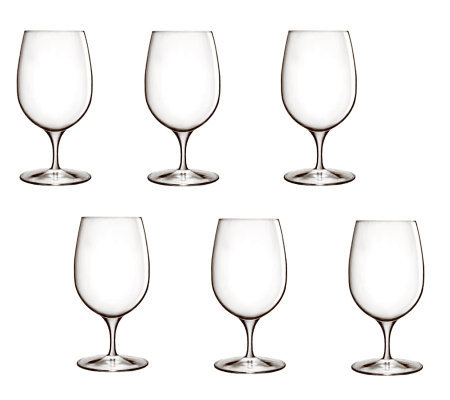 Luigi Bormioli 14.25-oz Palace Water Glasses -Set of 6