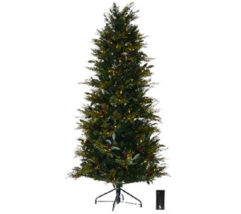 ED On Air Santa's Best 6.5' Bay Leaf Tree by Ellen DeGeneres - H206413
