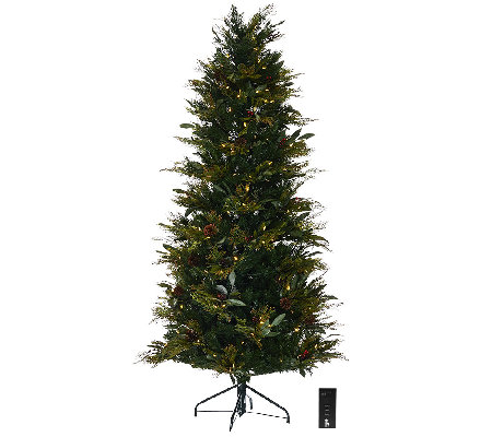 ED On Air Santa's Best 6.5' Bay Leaf Tree by Ellen DeGeneres