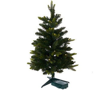 "Bethlehem Lights Noble Spruce 30"" Stake Tree - H206614"